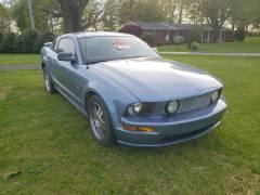 2006 Mustang GT (12)
